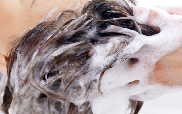 シャンプー頭皮