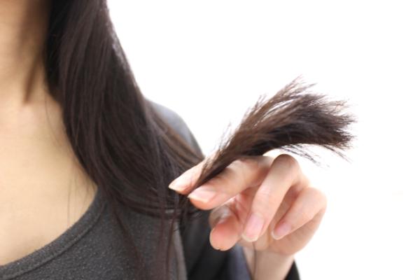 枝毛の画像