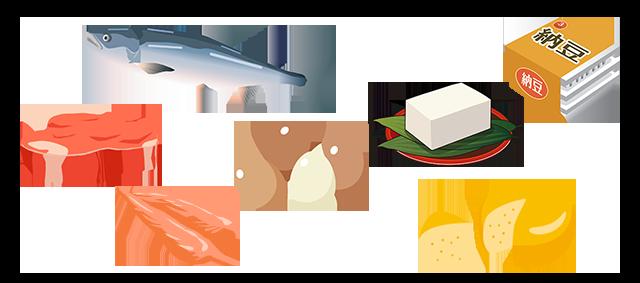 タンパク質の多い食べ物,青魚,卵,肉,チーズ,大豆製品