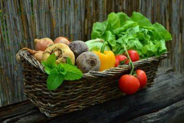 オーガニック野菜,食品